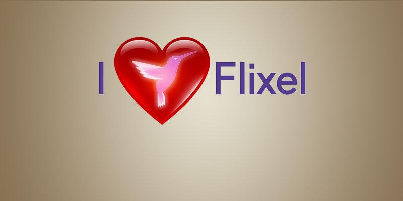 FLIXEL-techenvy2